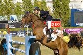 Pferd springen - Cassio Rivetti