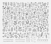 Fotografie Hand Drawn vintage floral elements