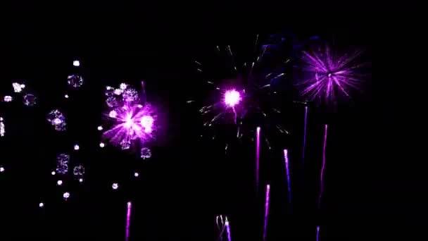 Firework Show Animation - Loop Purple