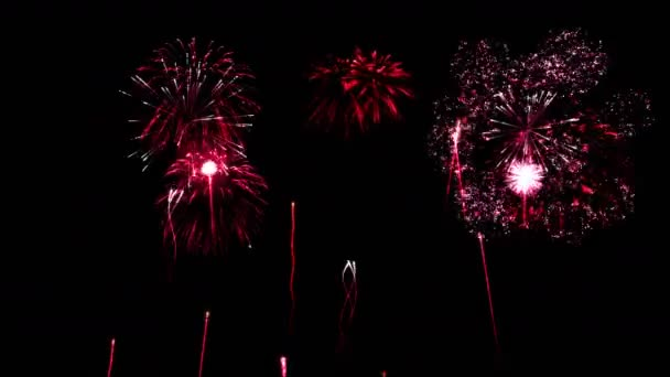 Firework Show Animation - Loop Red