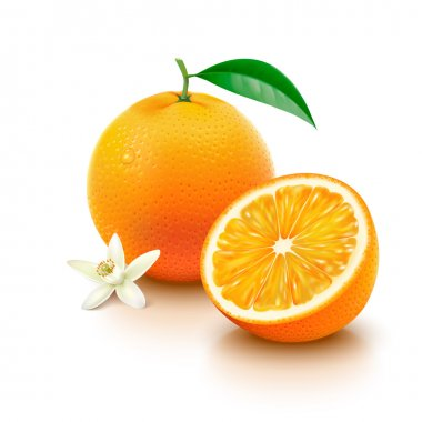 Orange fruit with half and flower on white background
