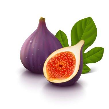 Figs fruit on white background
