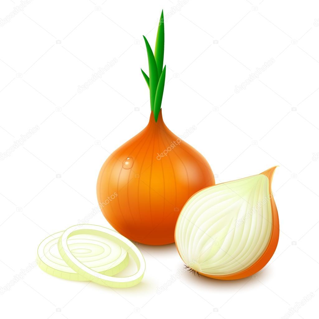 Yellow onion on white background