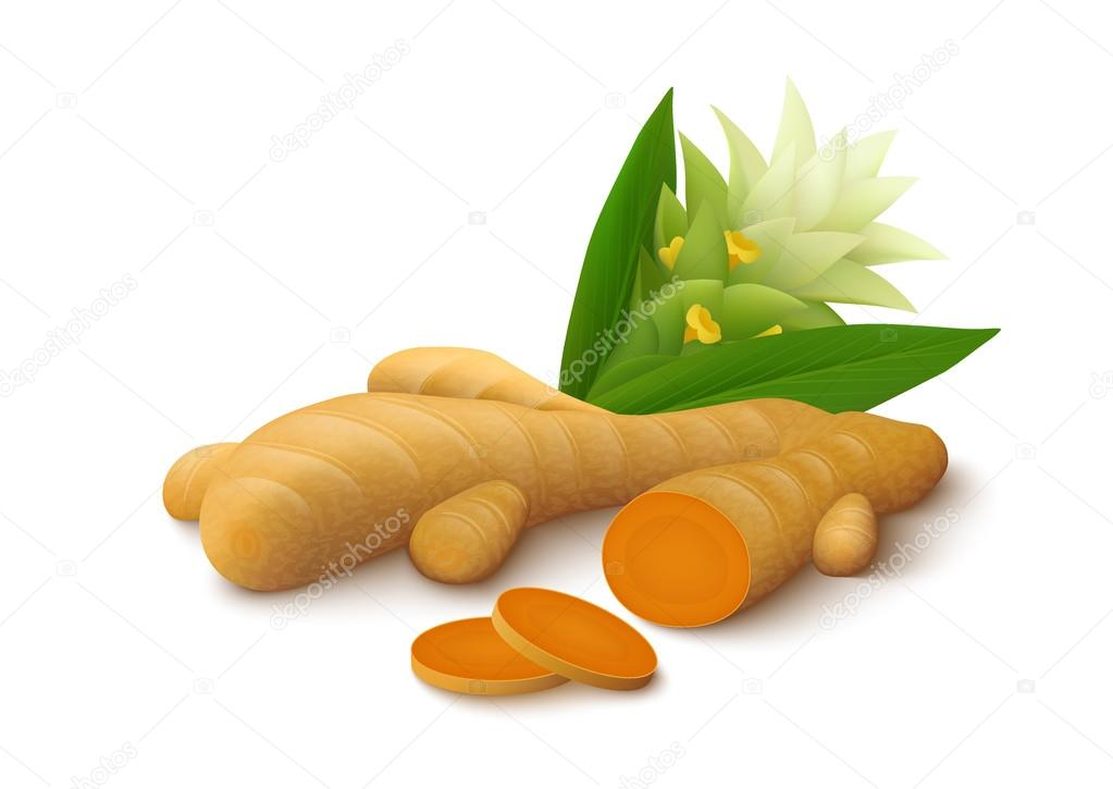 Turmeric with flower on white background
