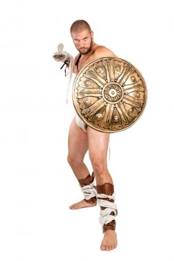 Gladiator posing with shield and sword