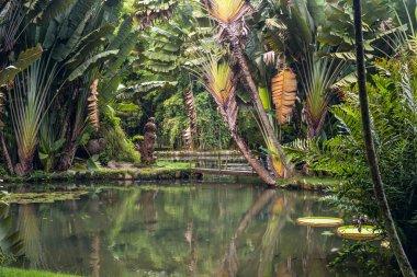 Botanical Garden of Rio de Janeiro, Brazil