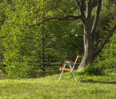 Folding chair standing under the spring ceiba tree on a hill