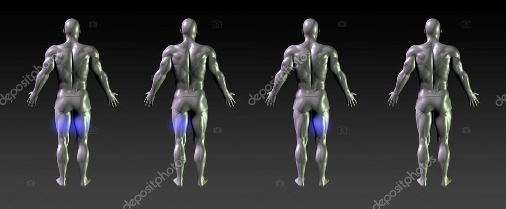 Resumen de concepto de recuperación de músculos isquiotibiales ...