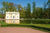 Fotografie Catherine palác Puškin, st. petersburg