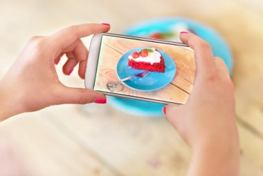 Woman photographing food with smartphone stock vector