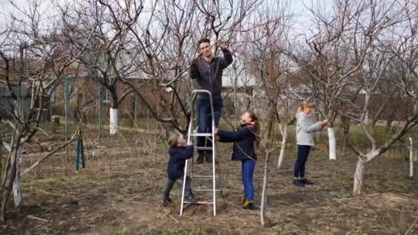 Dad and mom are in the garden pruning branches on a tree with a brushcutter and pruning shears. Son and daughter hold a ladder. The concept of spring tree pruning and garden maintenance.