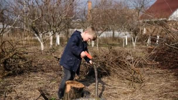 Malý chlapec pomáhá svému otci prořezávat stromy v zahradě pilou na jarní den. Koncept prořezávání jarních stromů a údržby zahrady.