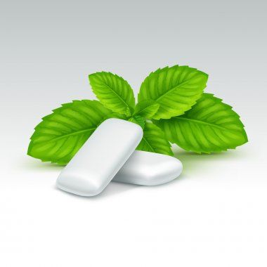 Vector Chewing Gum with Fresh Mint Leaves Isolated