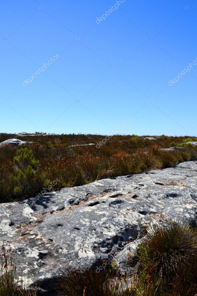 View Top Table Mountain Cape Town South Africa Stock Photo - Table top mountain south africa