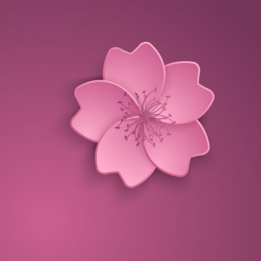 Cherry blossom. Sakura flowers vector illustration.