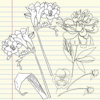 Notebook set with peony and freesia
