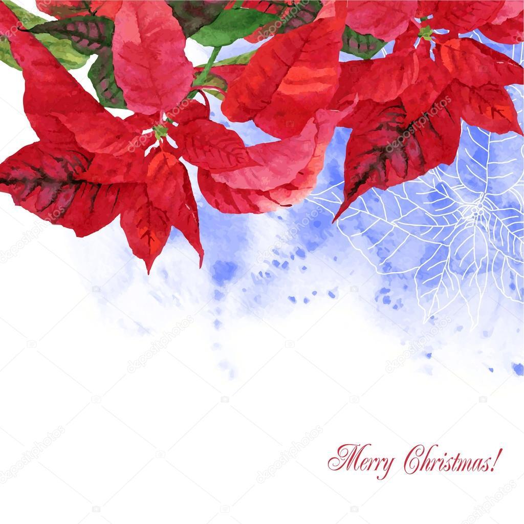 Aquarell Hintergrund mit Weihnachtsstern Blumen-04 — Stockvektor ...