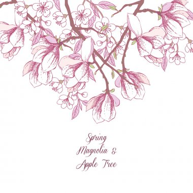 Background with magnolia and apple tree