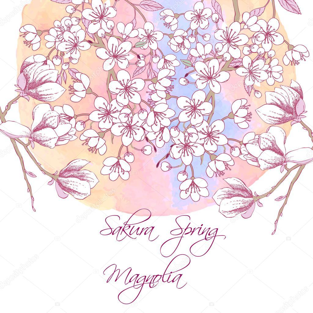 Sakura and Magnolia