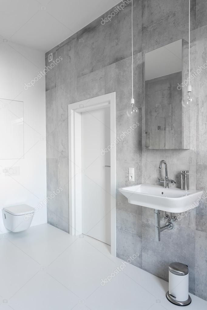 Szary I Biały łazienka Zdjęcie Stockowe Photographeeeu