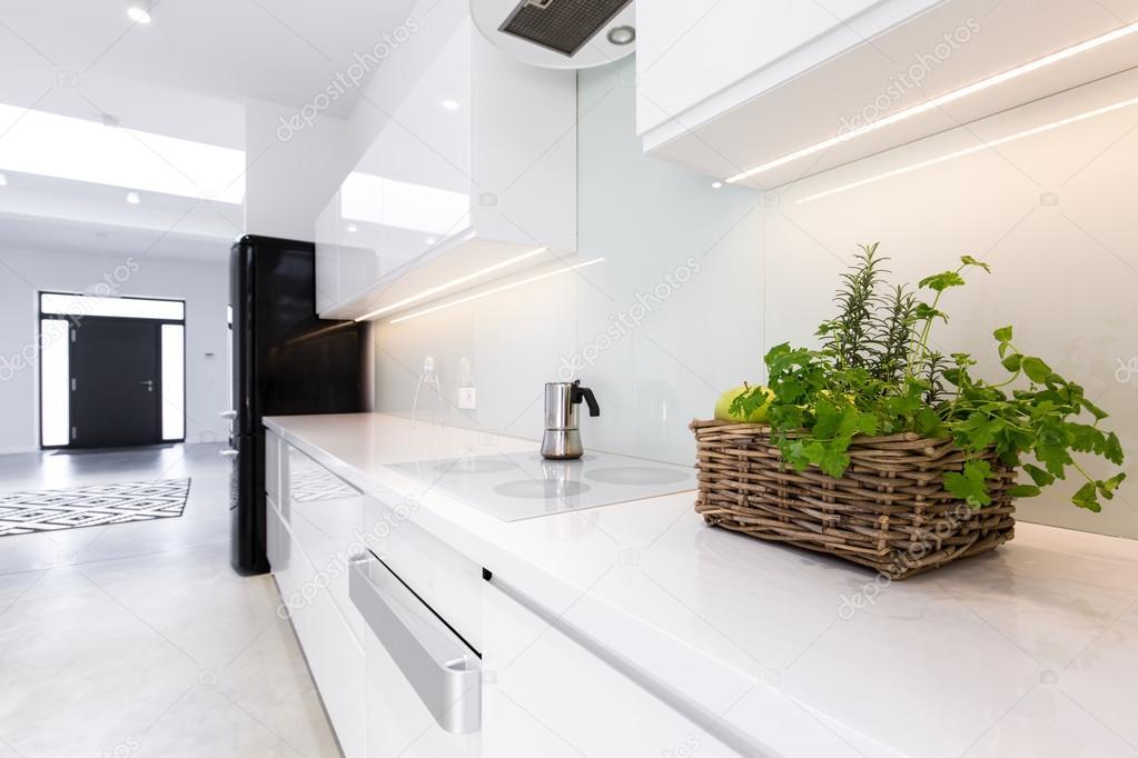 Kräuter in der Küche — Stockfoto © photographee.eu #103281512