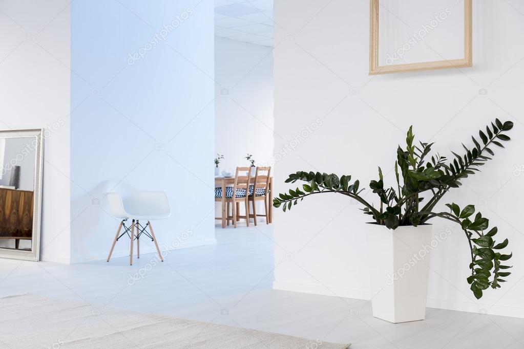 Geräumige, Weiße Einrichtung Mit Großer Spiegel, Stuhl Und Pflanzen In  Dekorativen Topf, Holzrahmen An Die Wand Hängen U2014 Foto Von Photographee.eu