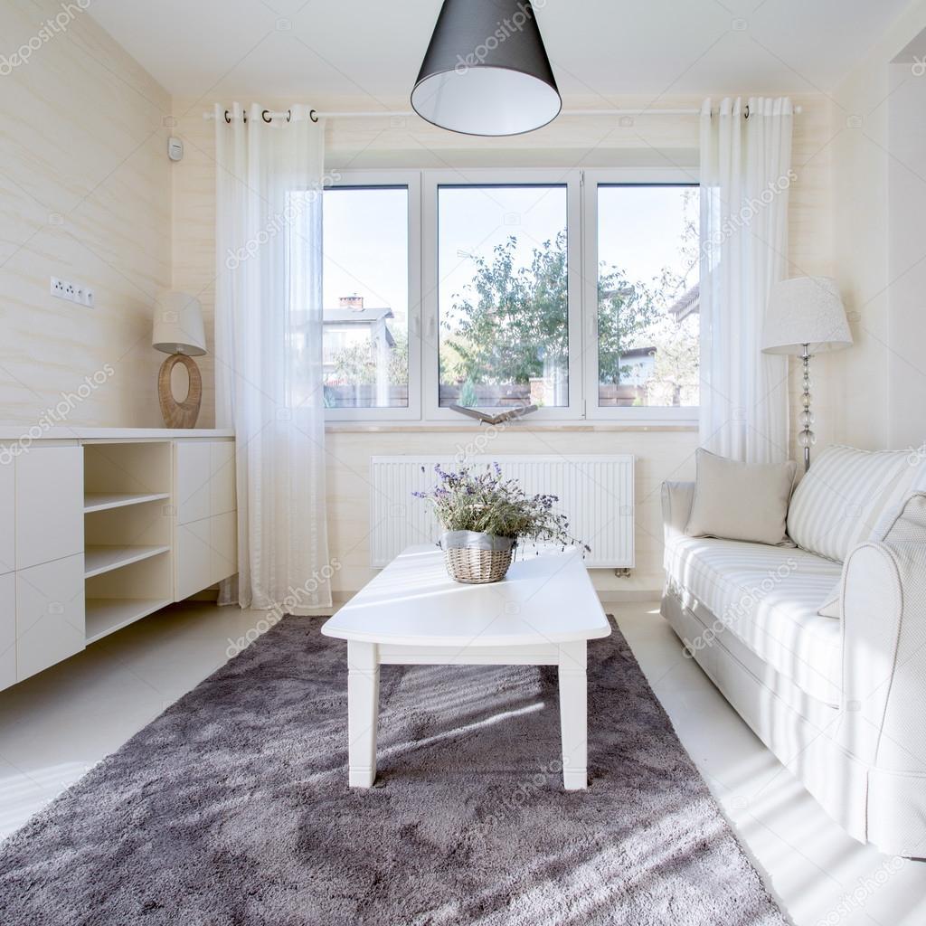 Helles, Modernes Wohnzimmer Mit Dunklen Teppich U2014 Foto Von Photographee.eu