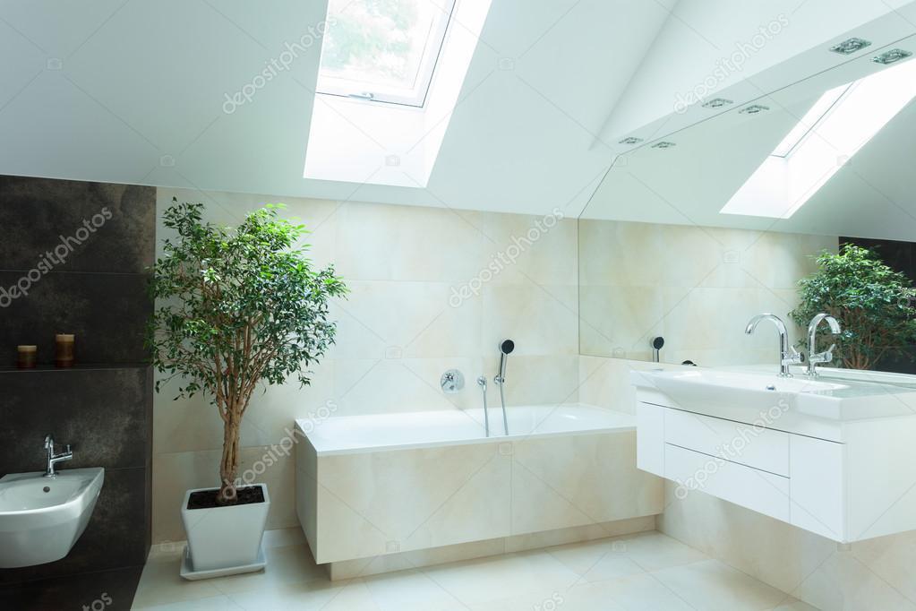 Bagno Colori Neutri : Bagno spazioso con colori neutri u foto stock photographee eu