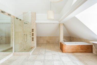 Rock bathroom