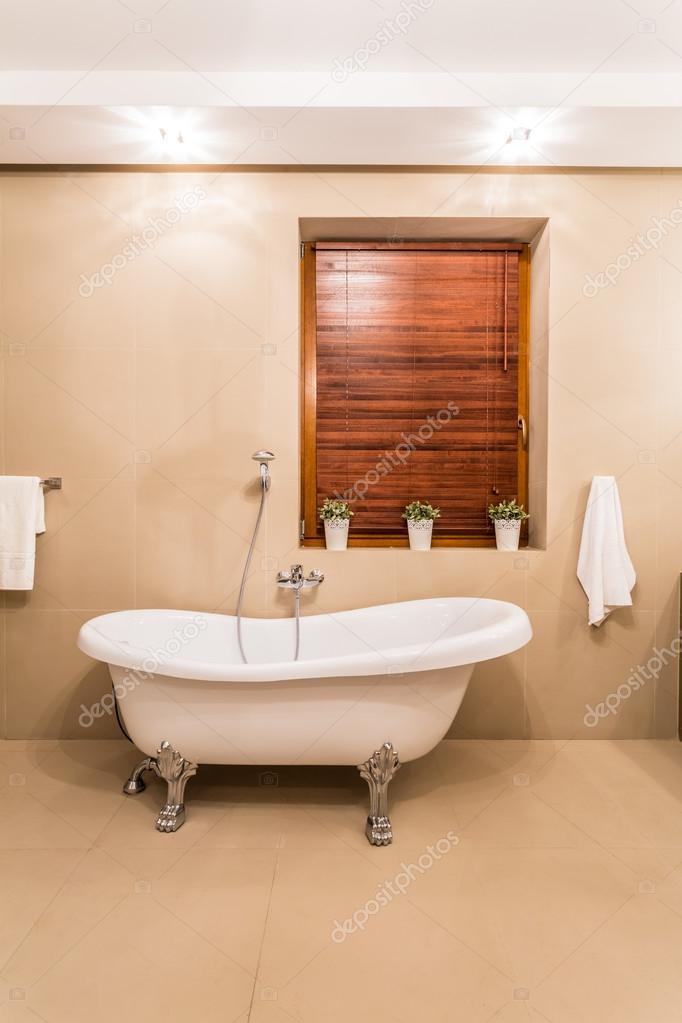 Old style bathtub — Stock Photo © photographee.eu #59160607