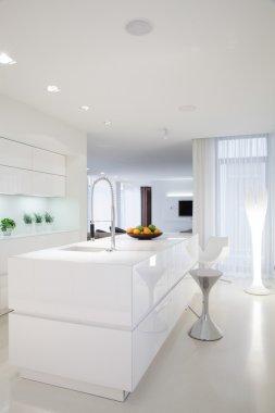 Beauty white kitchen interior