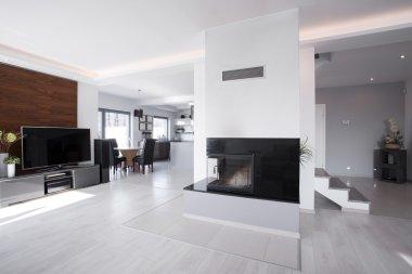 Bright contemporary mansion interior