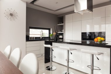 Contemporary decor of kitchen