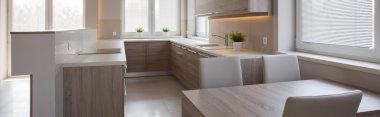 Sleek kitchen in modern house