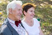 Fotografie Porträt von glücklich altes Paar