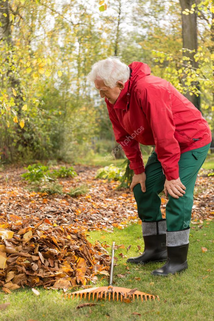 Senior man working in a garden
