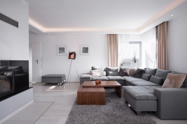 Modern interior in elegant style