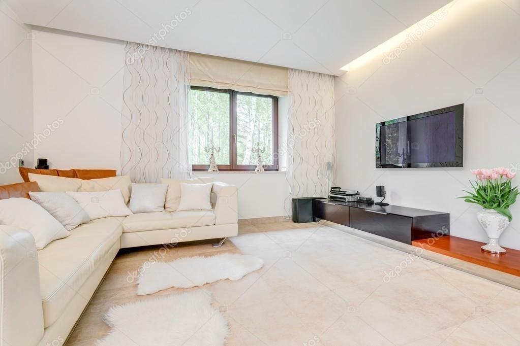 Gemütliches großes Wohnzimmer — Stockfoto © photographee.eu #84758928