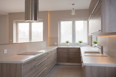 Commodious kitchen in light colors