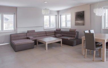 Luxurious leather sofa set