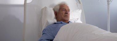 Elder hospice patient in bed