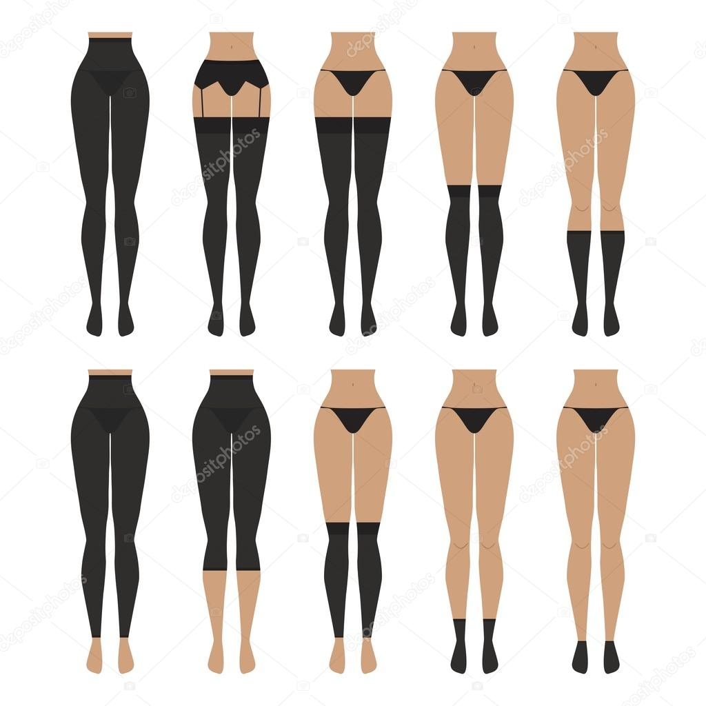 e921f7aee9692 Vector illustration. Hosiery elements - tights, stockings, golfs, leg  warmers, socks. Woman lingerie icons set. Cute silhouettes of female  underwear.