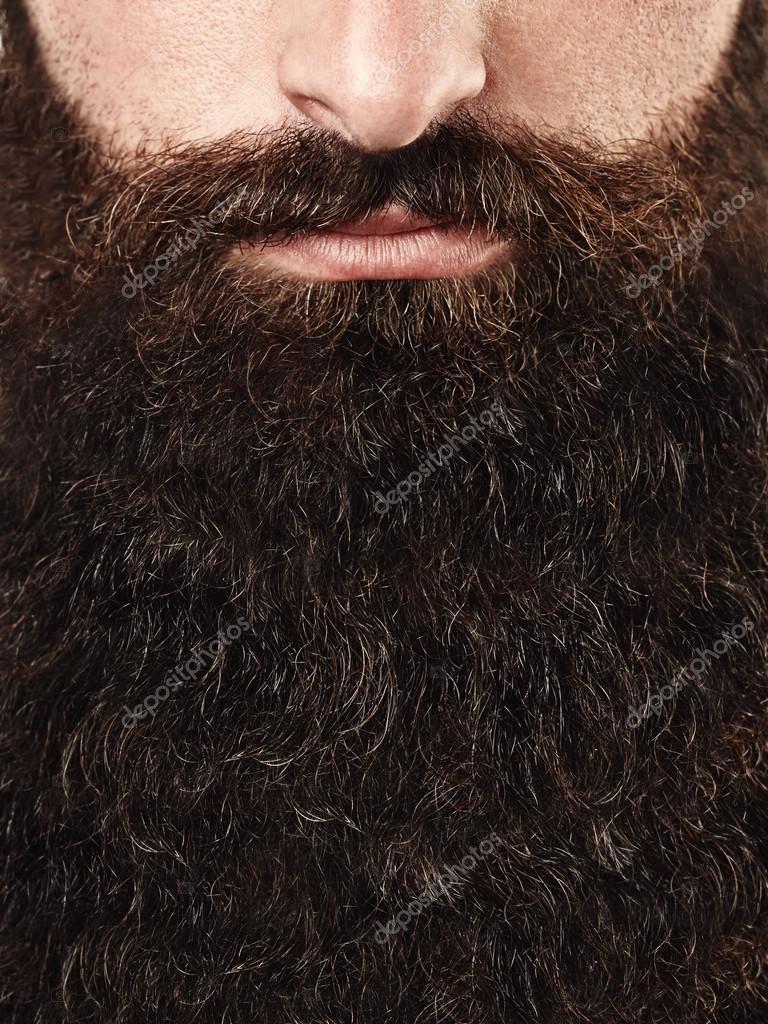 фото леча борода томата очередные