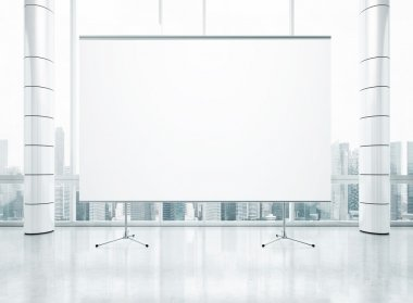 Projection screen over window.