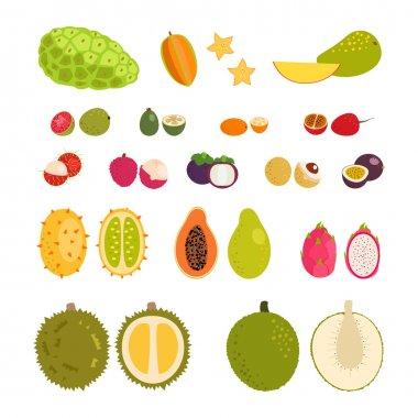 Set of flat cartoon vector illustration tropical exotic fruits