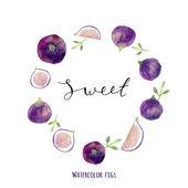 Fényképek Watercolor figs