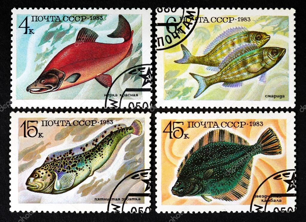 USSR - CIRCA 1983: a series of stamps printed in USSR, shows fishes, CIRCA 1983