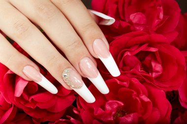 Hand with french manicure and red roses