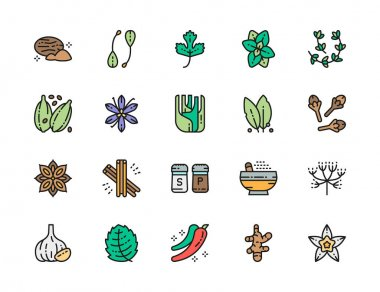 Set of Spice Flat Color Line Icons. Nutmeg, Capers, Parsley, Cardamom, Cloves, Cinnamon, Caraway and more. Pack of 48x48 Pixel Icons icon