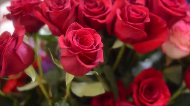 Mazzo di rose rosse fresche.